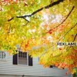 Gør dit hus klar til vinteren